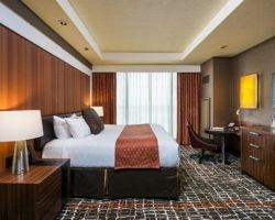 Luxurious Guests Rooms